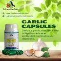 Garlic Pills