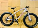 Jaguar White  Fat Tyre Cycle
