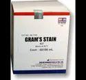 Gram's Staining Kit Biolab
