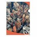 Super 3d - Nyc Licensed L Folder