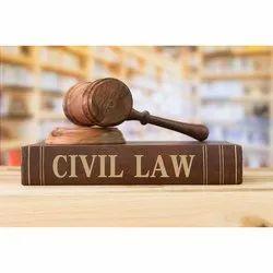 Criminal Case Consultancy Services