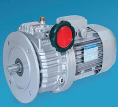 BSR Series Synchronous Motor