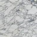 Arbescato Marble