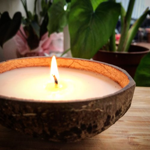Natural Round Soy Wax Candles Eco Friendly, The Bamboo Bae | ID: 22684177488