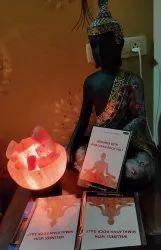 BOOK ON WELLNESS WITH HIMALAYAN ROCK SALT