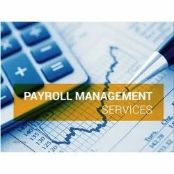 Up To 1 Week Online Payroll Management Services