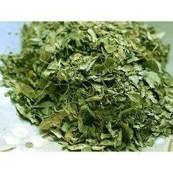 Moringa Products - Moringa Dry Leaves Exporter