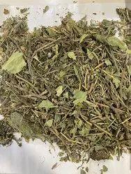 Dry Gaozaban Leaves, Grade Standard: Medicine Grade