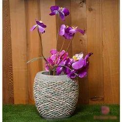 Round Garden Decorative Garden Pot, Size: 30x30 Cm
