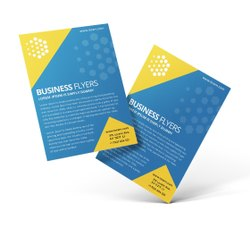 Vinyl Flyers Design Printing Services, In Local Area