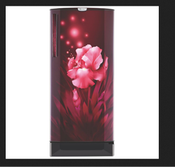 Godrej RD EDGEPRO 205D 43 TAI 190 Ltr Direct Cool Refrigerator
