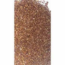 Tualsi Ocimum tenuiflorum seeds