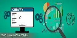 E Commerce Web Based Survey Services, Banking & Finance