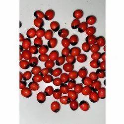 Arbus Red Seeds
