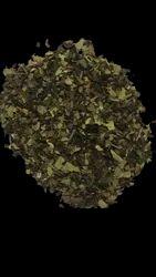 Green Leaf and tea leaves