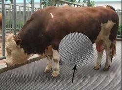 Cow Mat 4 Ft X 6 Ft X 17 Mm X 38 Kgs (approx)
