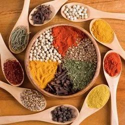 Spices and Condiments Testing Service