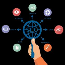 seo services, in Global