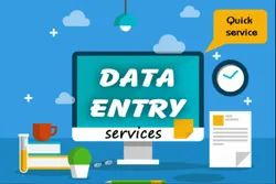 Online 11 Months Data Entry Process Service, in Pan India