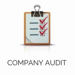 Company Auditing Services