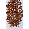 Ber Seeds Indian Jujube