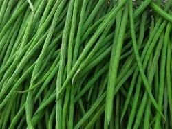 Green A Grade Drumstick Vegetable, Carton, 10 Kg
