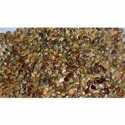 Crotalaria Straight Seed