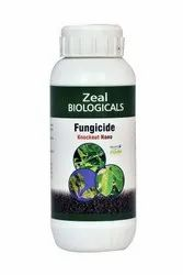 Bayer Fungicide