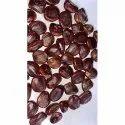 Tamarind Seed