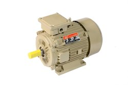 sse 3 Industrial Electric Motor, 440