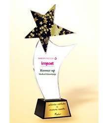 CG 331 Merit Award Crystal Trophy