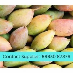 Organic A Grade Totapuri Mangoes, Packaging Type: Carton, Packaging Size: 3 and 4 kg
