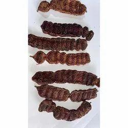 Acacia Consinna Seekakai