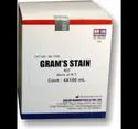 Gram Stain Kit  Ready To Use