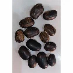 Mucuna Black Seed