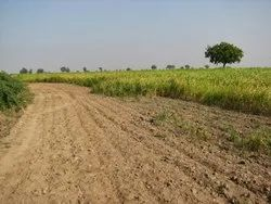Non Agricultural Land (NA) Land dealing services