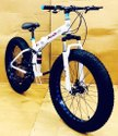 White  Audi Fat Foldable Cycle