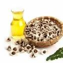 Moringa Oil Facts And Health Benefits