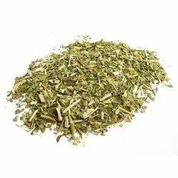 Ilex Paraguariensis Leaf/ Yarba Mate Extract-10:1