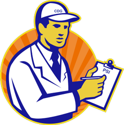 Pre Shipment Inspection Service