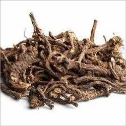 Dandelion Roots -  Taraxacum Officinale - Dudhi