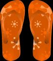 Hawai Slipper