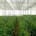 Urban Farming Services
