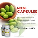 Neem Capsules For Acne