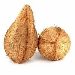 A Grade Semi Husked Pollachi Coconuts, Coconut Size: Large