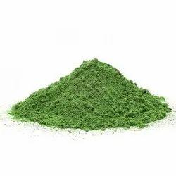Moringa Dried Leaves Manufacturers