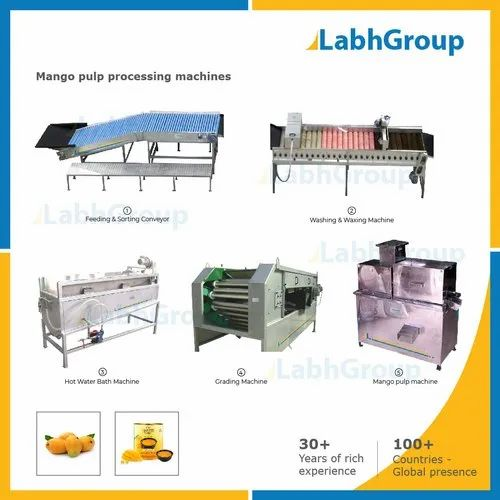 Mango Pulp Processing Machines