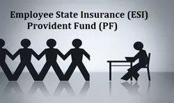 ESI / PF Registration