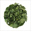 Moringa - Essential Protein & Nutrition