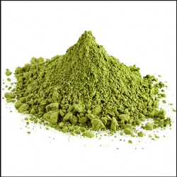 The Science-Backed Health Benefits Of Moringa Powder